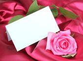 Linda rosa no pano-de-rosa escuro — Fotografia Stock