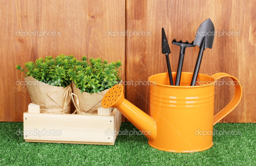 Gardening tools on wooden background — Stock Photo #10922711