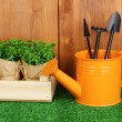 Gardening tools on wooden background — Foto Stock