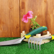 Gardening tools on wooden background — Lizenzfreies Foto
