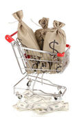 Bags with money in trolley isolated on white — Stock Photo