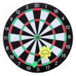Darts with stickers depicting the life values isolated on white. The darts hit the target. — Stock Photo #10978266