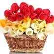 Beautiful tulips in basket isolated on white — Stock Photo #10978291