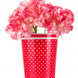 Beautiful carnations in red cup isolated on white - Stock Photo