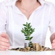 Woman hands with coins and plant — Stock Photo #10986986