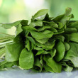 Sorrel on green background — Stock Photo #10987181