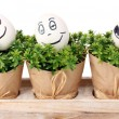 White eggs with funny faces on green bushes — Stockfoto #10987428