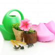 Watering can, galoshes, tools and plants in flowerpot isolated on white — Stock Photo #10987824