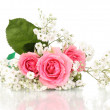 Pink roses in bouquet isolated on white — Stockfoto #10989535