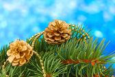 Grüne Weihnachtsbaum und Kegel auf blau — Stockfoto