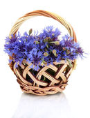 Cornflowers in basket isolated on white — Stock Photo