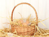 Brown eggs in a wicker bascet on straw on white wooden background — Stock Photo