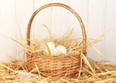 White eggs in a wicker bascet on straw on white wooden background — Stock Photo