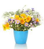 Beautiful bouquet of bright wildflowers in flowerpot, isolated on white — ストック写真