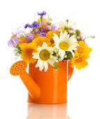Beautiful bouquet of bright wildflowers in watering can, isolated on white — Foto Stock