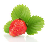 Sweet ripe strawberry with leaves isolated on white — Stock Photo