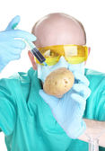 Scientist injecting GMO into the potato — Stock Photo