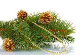 Green Christmas tree and cones isolated on white — Stock Photo