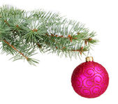 Christmas ball on the tree isolated on white — Stock Photo