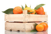 Ripe tasty tangerines with leaves in wooden box isolated on white — Stock Photo