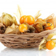 Physalis in basket isolated on white — Stock Photo