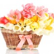 Beautiful tulips in basket isolated on white — Stock Photo #11027941