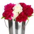Beautiful pink and white peonies in bucket isolated on white - Stock Photo