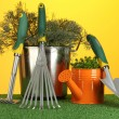 Stock Photo: Garden tools on lawn on bright colorful background close-up