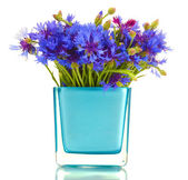 Cornflowers in vase isolated on white — Stock Photo