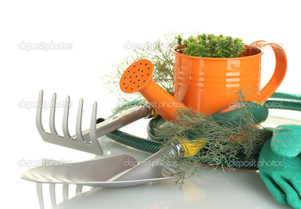 Garden tools on white background close-up — Stock Photo #11038043