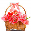Beautiful pink tulips in basket isolated on white - Stock Photo
