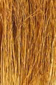 Broom close up — Stock Photo