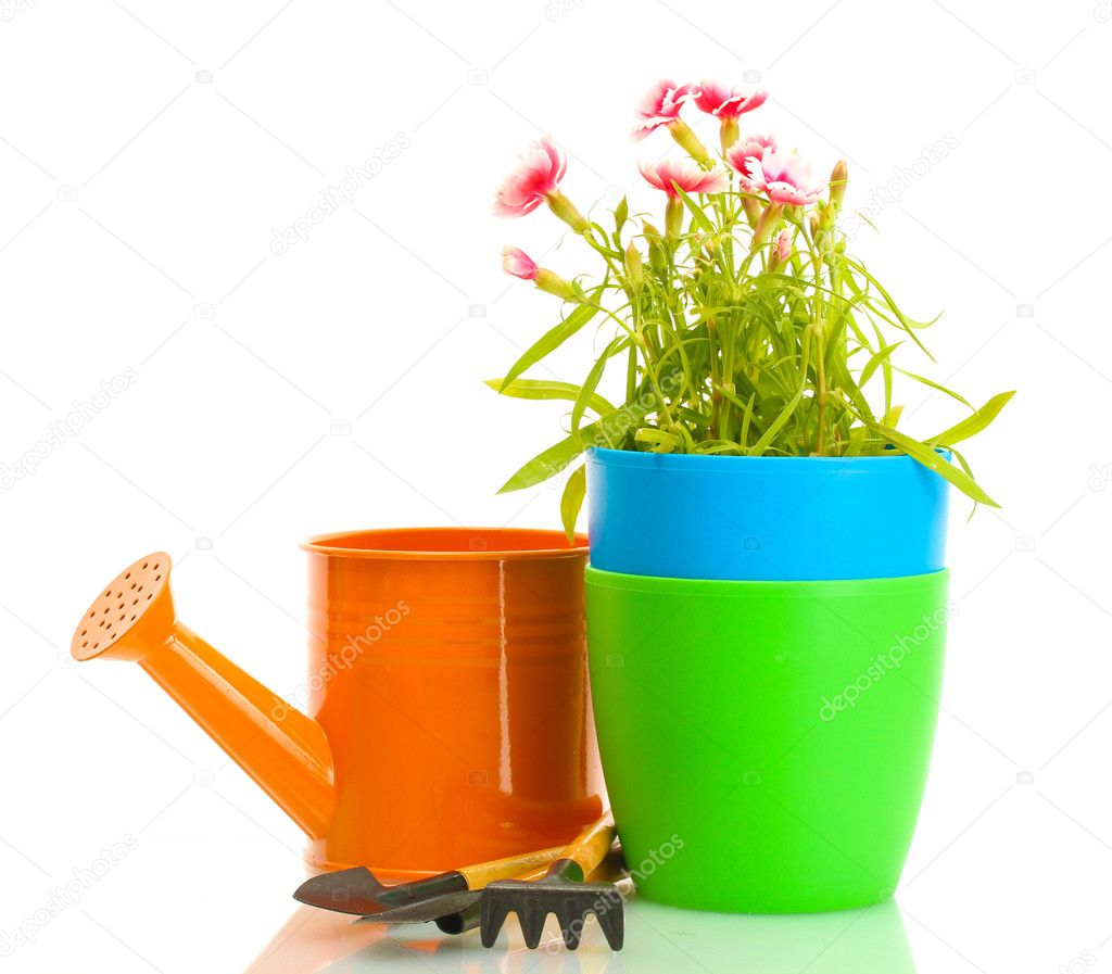 Watering can, tools and plant in flowerpot isolated on white — Stock Photo #11071574
