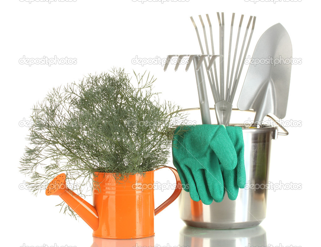Garden tools isolated on white — Stock Photo #11072035