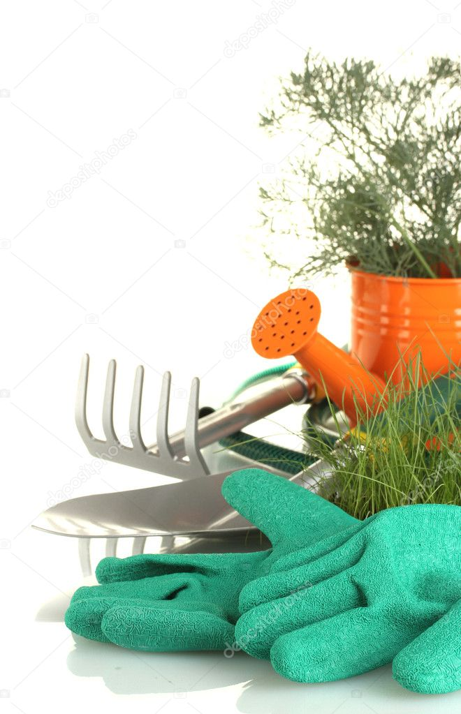 Garden tools on white background close-up — Stock Photo #11072039