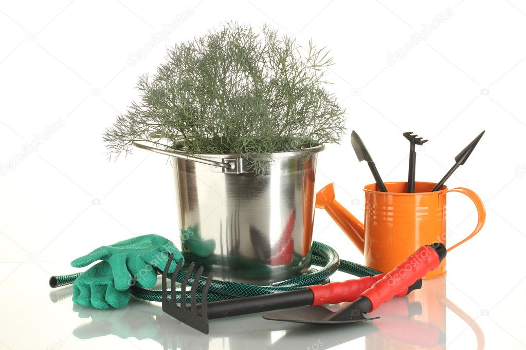 Garden tools isolated on white — Stock Photo #11072046