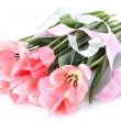 Beautiful pink tulips isolated on white - Stock Photo