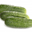 Cucumbers isolated on white — Stock Photo #11088998