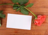 Beautiful rose on wooden background — Fotografia Stock