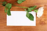 Bella rosa su legno backgground — Foto Stock