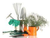 Garden tools isolated on white — Stock Photo