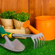 Gardening tools on wooden background — Stock fotografie