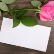 Stock Photo: Beautiful rose on wooden background