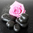 Spa stones with drops and pink rose on grey background - Стоковая фотография
