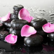 Spa stones with drops and rose petals on grey background - Stockfoto