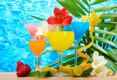 Exotic cocktails and flowers on table on blue sea background — Stock Photo