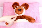 больные медведь в постели — Стоковое фото