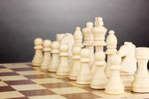 Chess board with chess pieces on grey background — Stock Photo