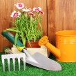 Gardening tools on wooden background - 图库照片