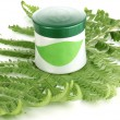 Royalty-Free Stock Photo: Jar of cream with branch of fern isolated on white